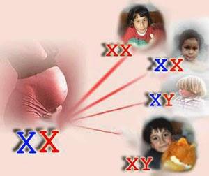 10 penyakit keturunan