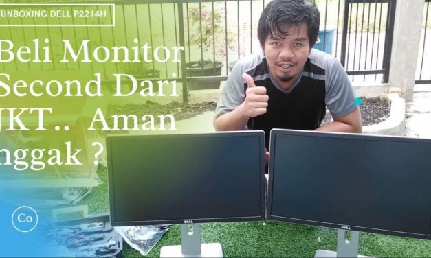 Pengalaman Beli Monitor Second Dell P2214H 22 Inch Dari Jakarta, Pecah Nggak sampai PKU ?